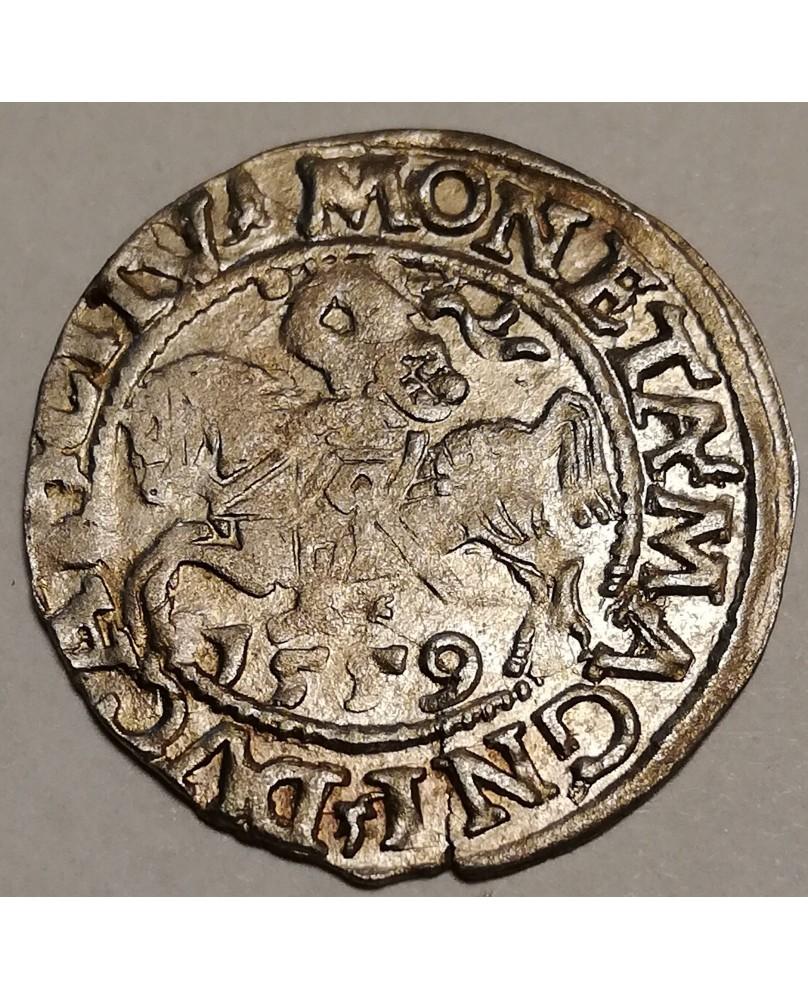 LDK. Žygimantas Augustas. Pusgrašis, 1559 m.