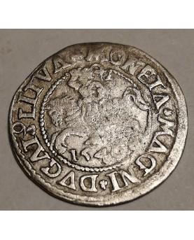 LDK. Žygimantas Augustas. Pusgrašis, 1546 m.