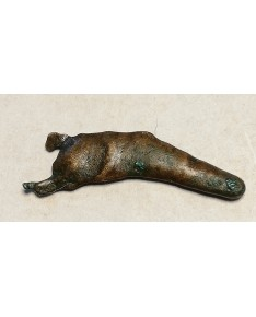 Olbija. Delfinas, 500-400 BC (iš kolekcijos)