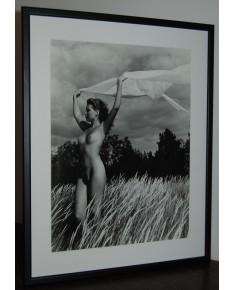 R. Dichavičius (g. 1937). Nuotraukos (moterų aktai), 5 vnt, apie 1980 m. (p037)